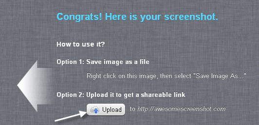 Upload the Screenshot to Get a Shareable Link