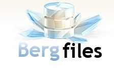bergfiles icon