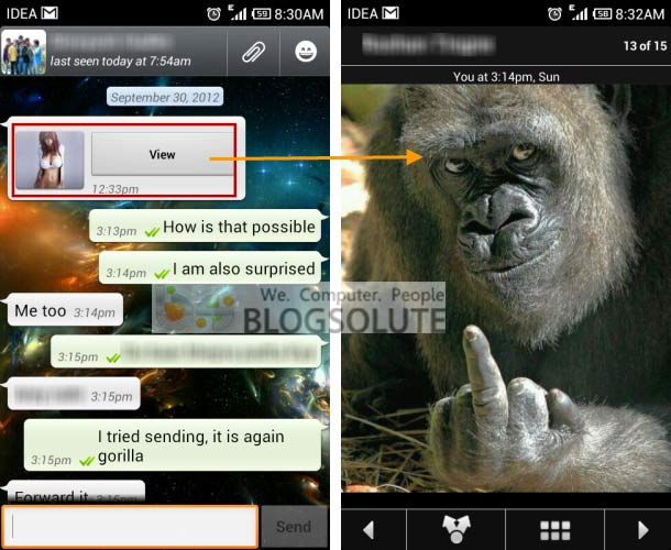 Girl Gorilla Whatsapp Funny Picture